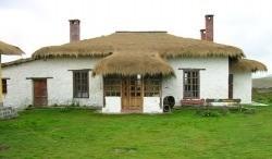 Antisana House
