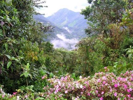Mountain View at Bellavista