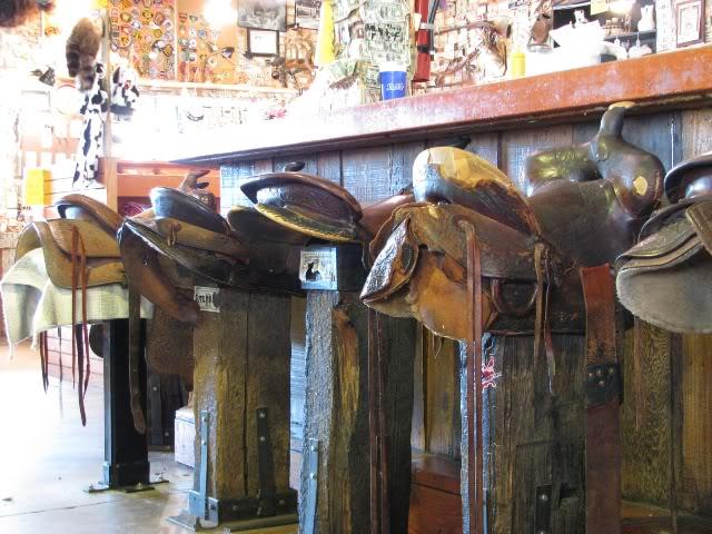 arizona saddles
