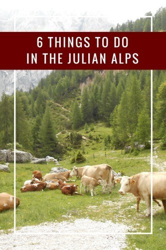 Slovenia's Julian Alps (including Triglav National Park) is an area of natural beauty and lots of outdoor activities. Options like hiking, biking, rafting, and more make a great trip! Learn more at https://sightdoing.net/things-to-do-triglav-national-park/