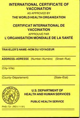 international certificate of vaccination cdc travel vaccines