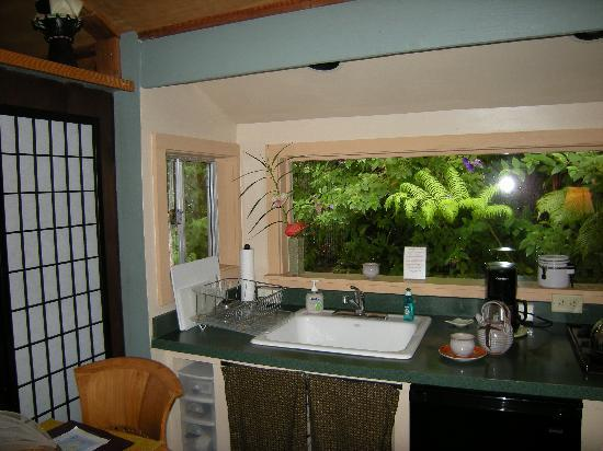 volcano artist cottage hawaii airbnb | airbnb coupon code | airbnb reviews