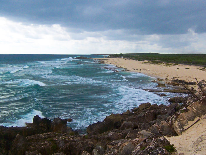 east side wild side beach