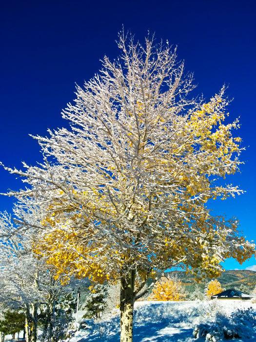 Enchanted Circle Drive New Mexico