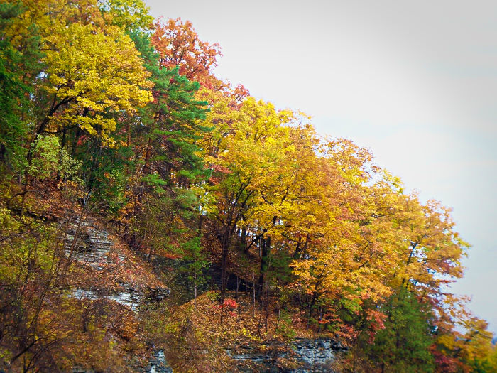 fall in the finger lakes-1-01