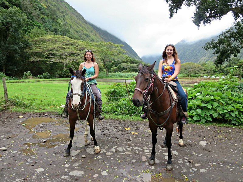 horseback ride waipio hawaii the big island hawaii