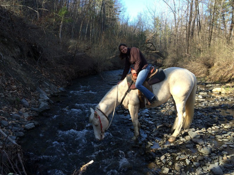 horseback riding seneca lake finger lakes ny