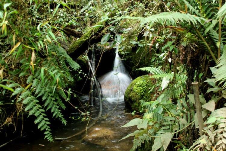 quebrada la vieja bogota hike waterfalls