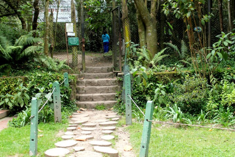 entrance stairs to quebrada la vieja hike