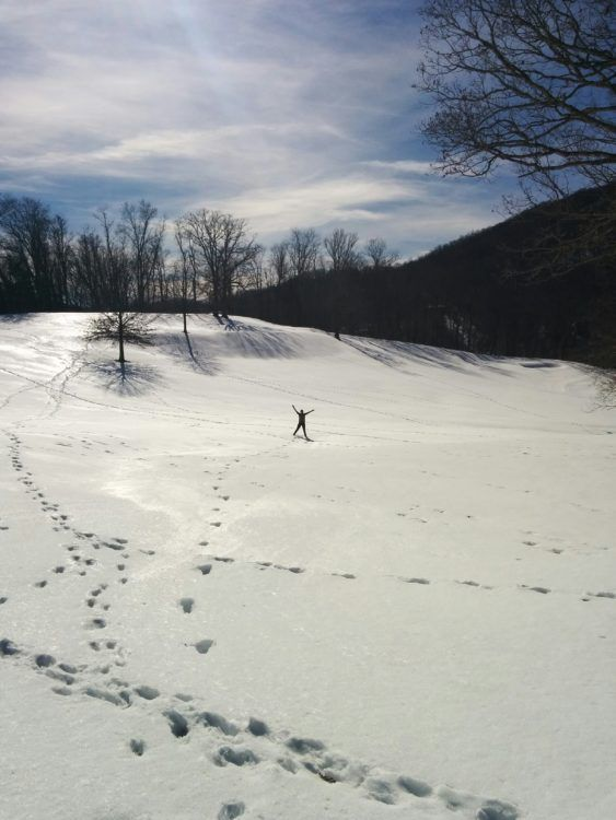 the homestead resort virginia snow