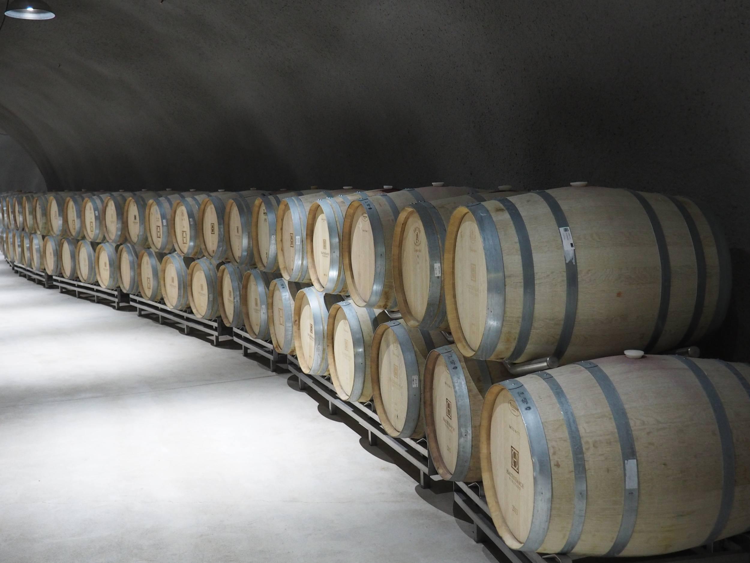 wine tasting in paso robles / barrel cellar in halter ranch vineyard excursion tour