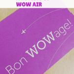 This review of WOW air shares why it can be a great choice -- but a few things to look out for on cheap flights to Europe.