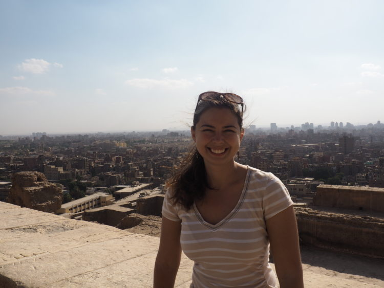 travel to cairo / panoramic view from citadel
