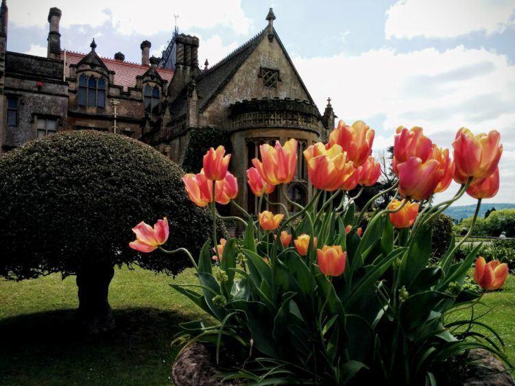 tyntesfield estate bristol england / things to do in bristol uk / bristol united kingdom