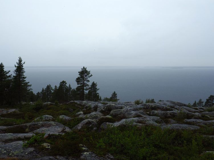things to do in skelleftea sweden hiking in nature reserve
