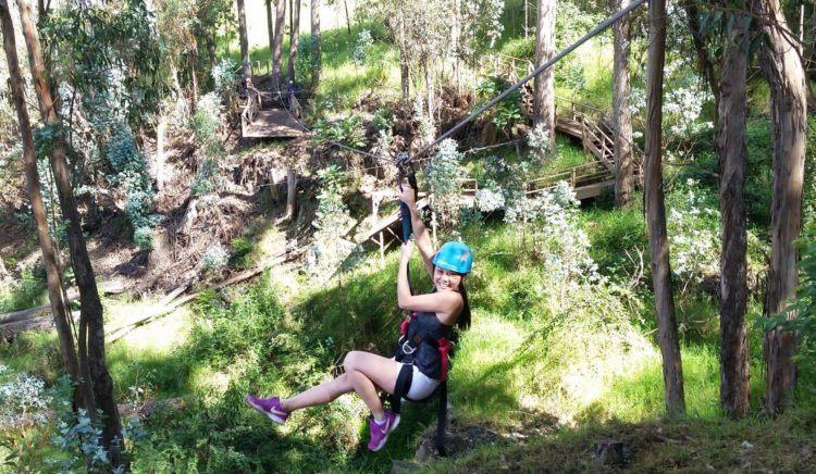 Guilt-free ziplining in Maui.