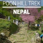 ghorepani poon hill trek nepal