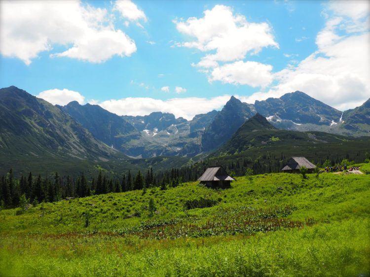 zakopane poland tatra mountains