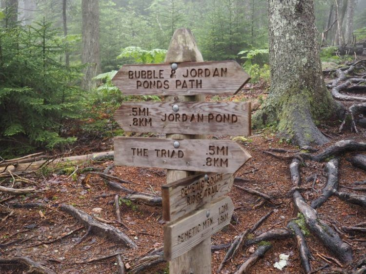 hikes in acadia national park maine - acadia national park trails