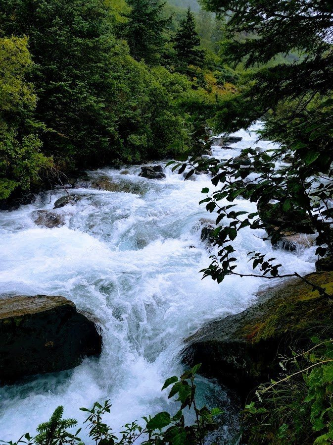 Creek in Juneau Alaska, a popular stop for anyone who wants to plan a trip to Alaska