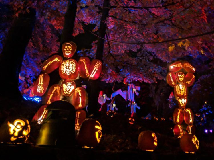 the great jack o lantern blaze 1