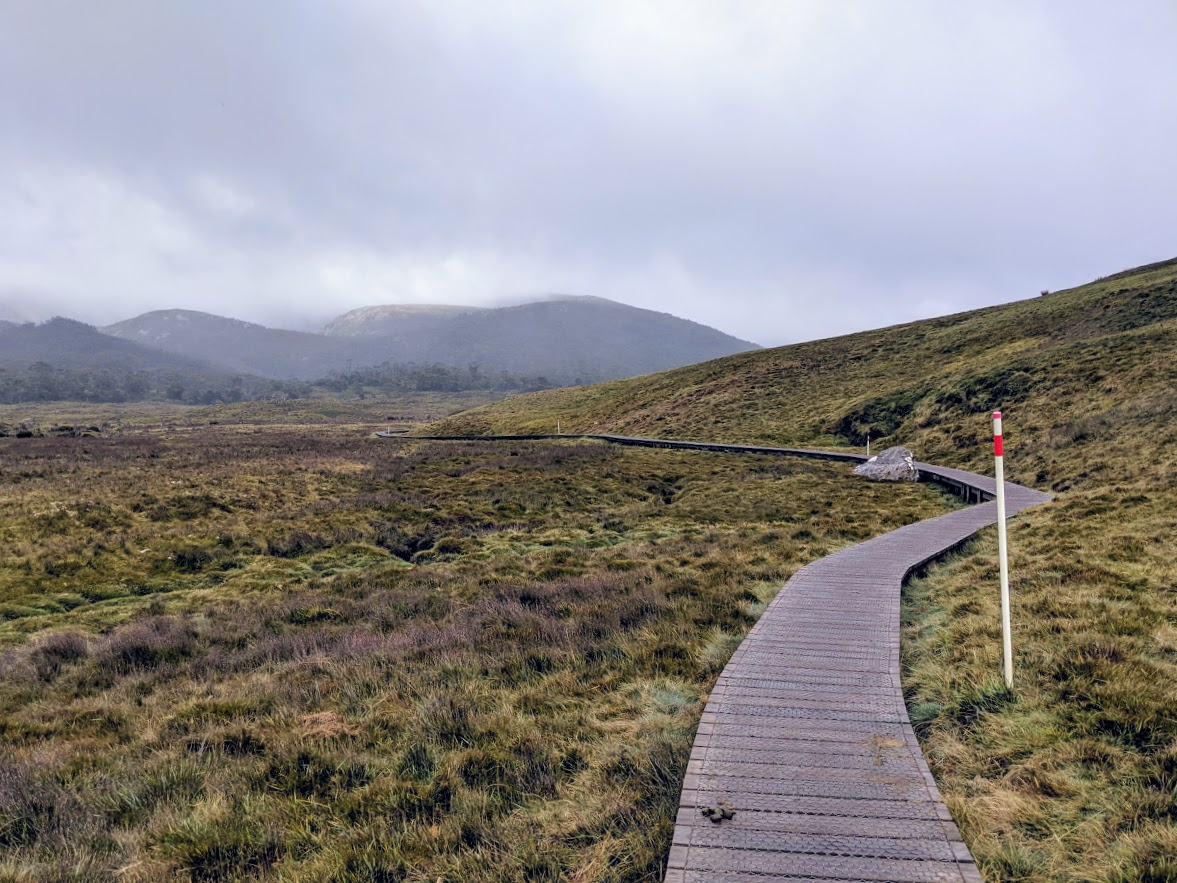 boardwalk trail at cradle mountain national park