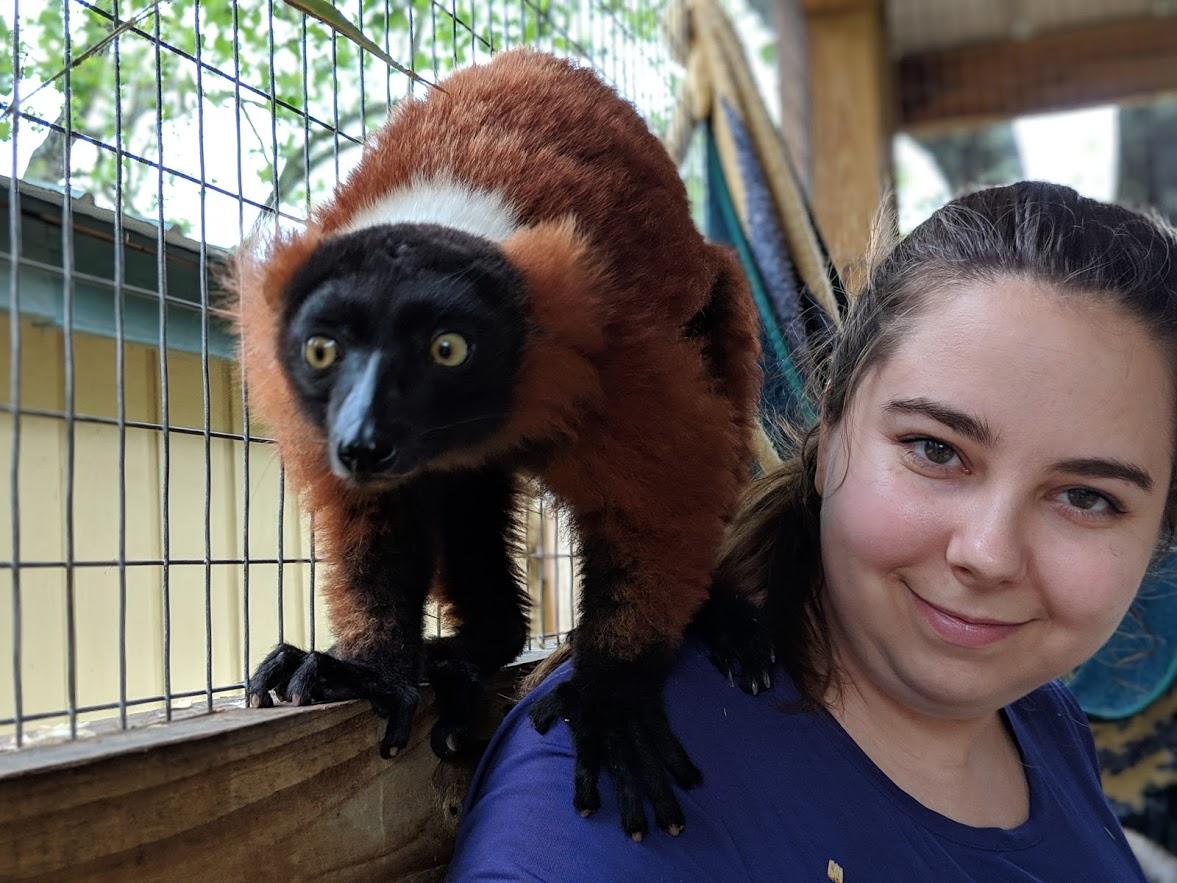 lemur gulf shores al