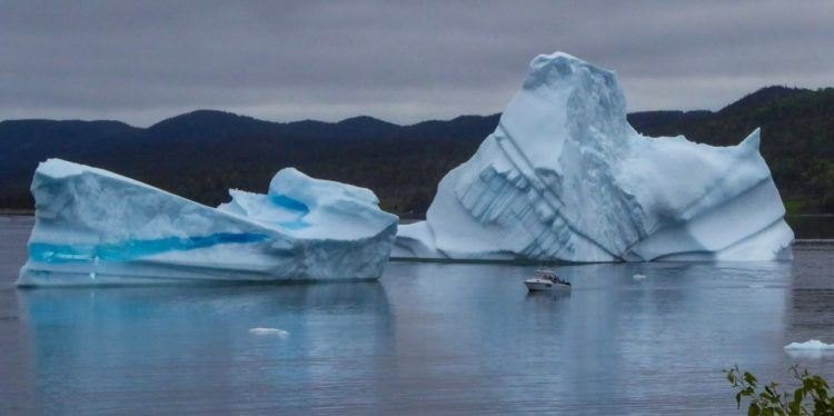 boat in front of two newfoundland icebergs