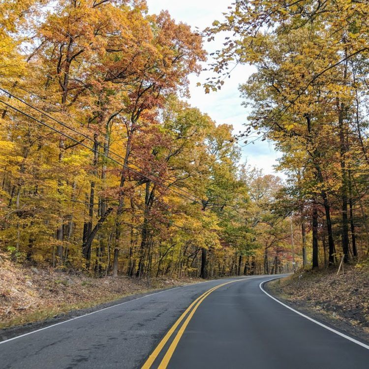 road through the hudson valley, lined with fall colors