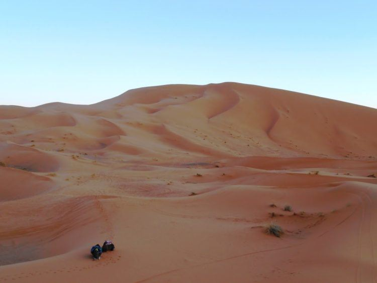 Camel riding amongst the Erg Chebbi dunes, a highlight of my two weeks in Morocco.