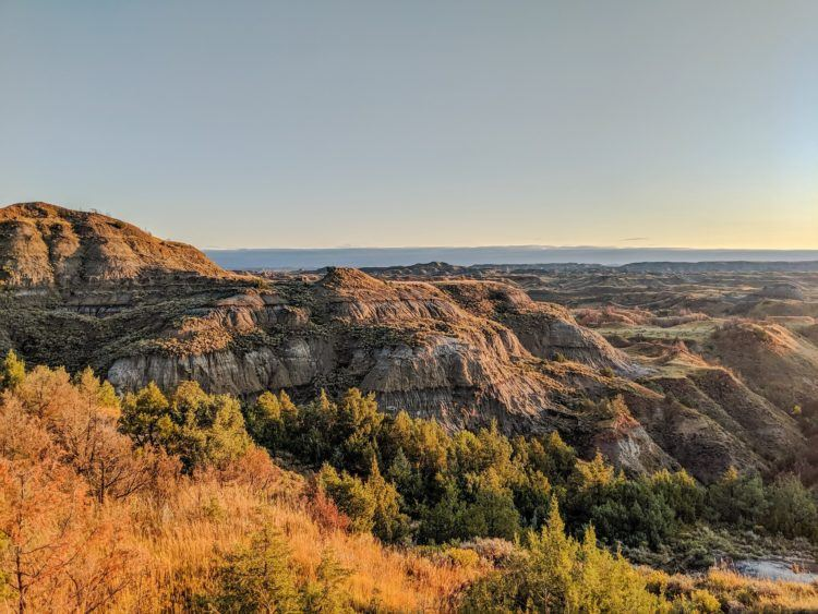 yellow foliage in front of badlands