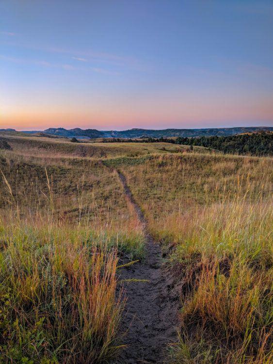 trail through the grasslands