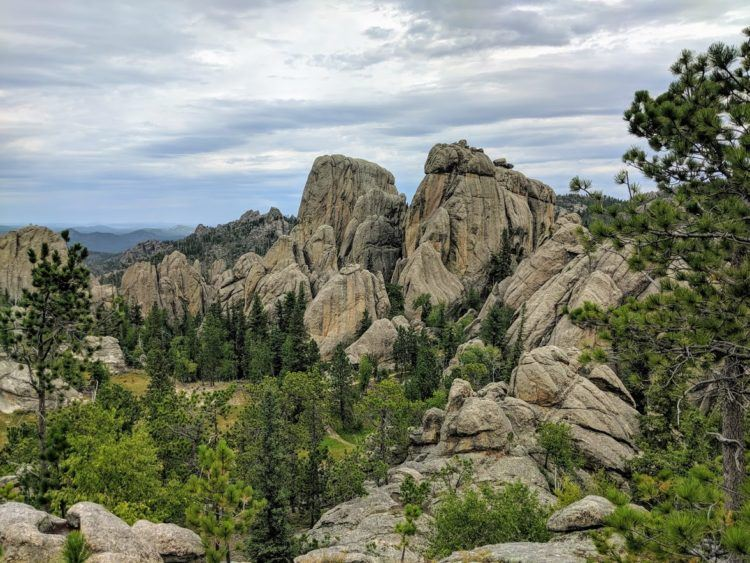 custer state park overlook