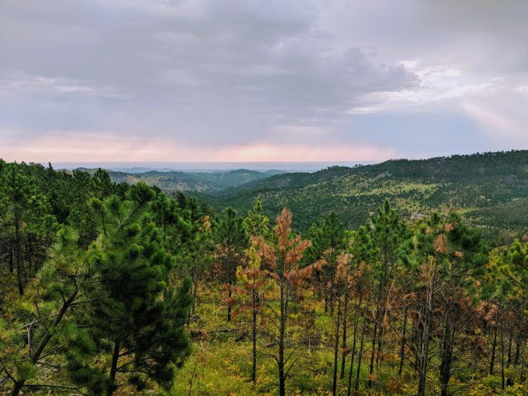 overlook at sunrise in custer sd