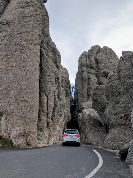 tunnel on needles highway in custer state park