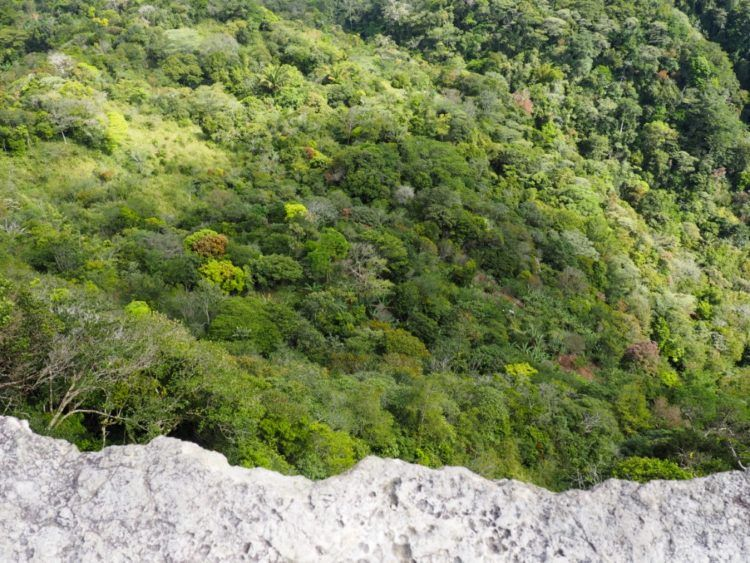 Peering down off the edge, which drops steeply and abruptly.