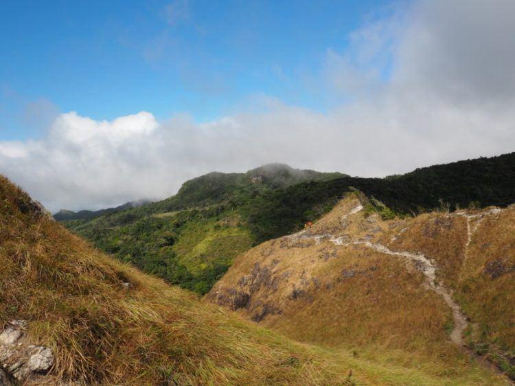 long winding trail