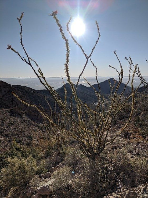 Franklin Mountains overview
