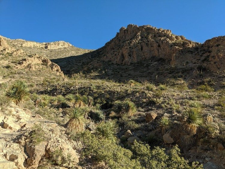 McKelligon Canyon in the morning