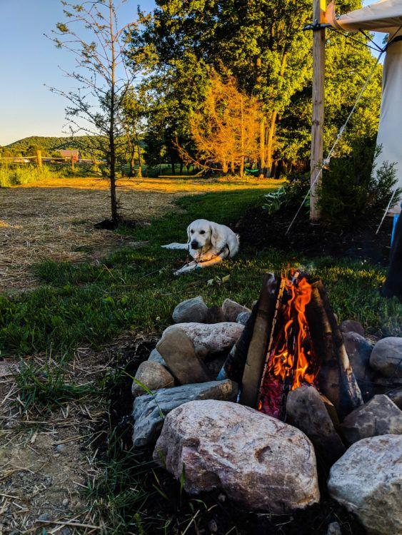 glamping campfire