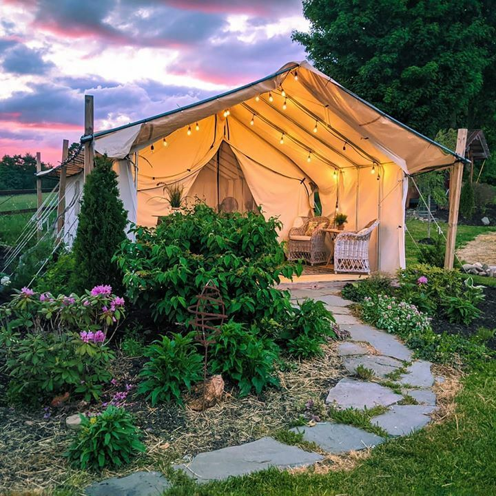 safari tent at sunset