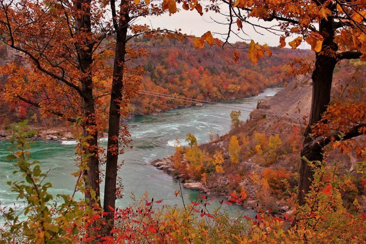niagara falls river gorge in fall