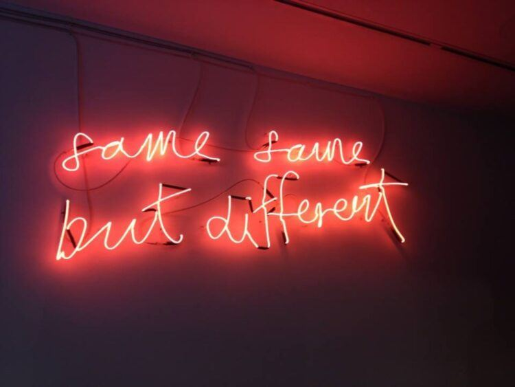 same same but different neon sign