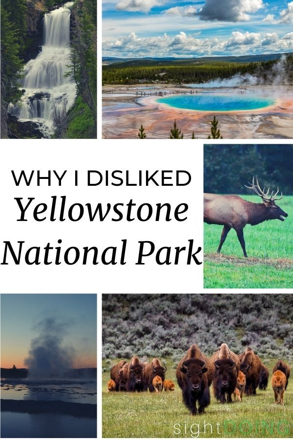 yellowstone park opinion pinterest
