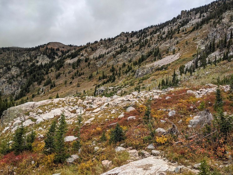 fall colors on mountainside