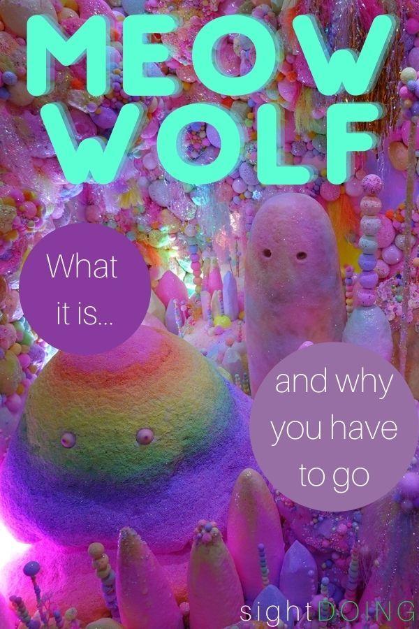 meow wolf pinterest