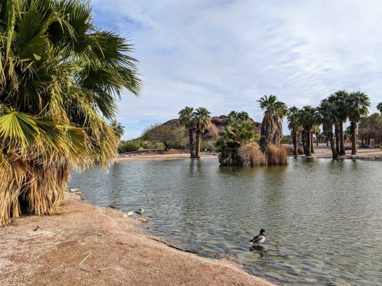 papago park lagoon