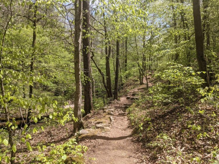 trail to hemmed-in-hollow