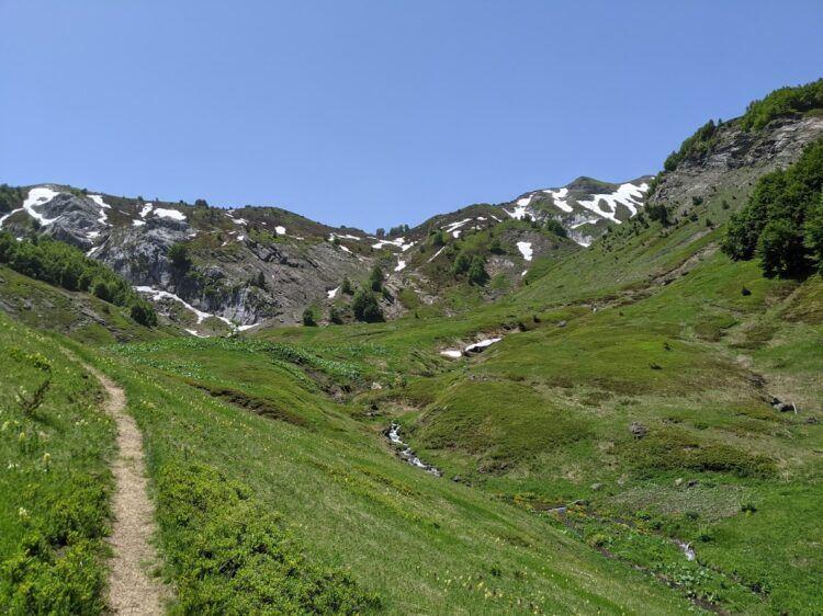 meadow in prokletije national park montenegro